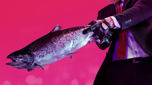 Hitman 2 weapon of choice Fish